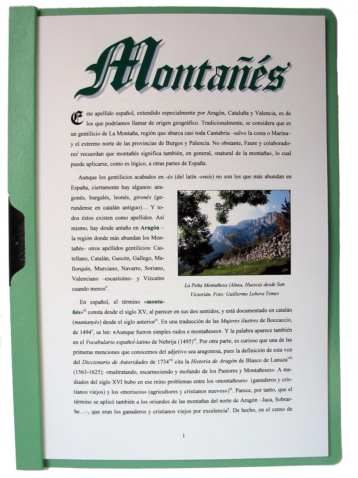 Portada del estudio del apellido Montañés